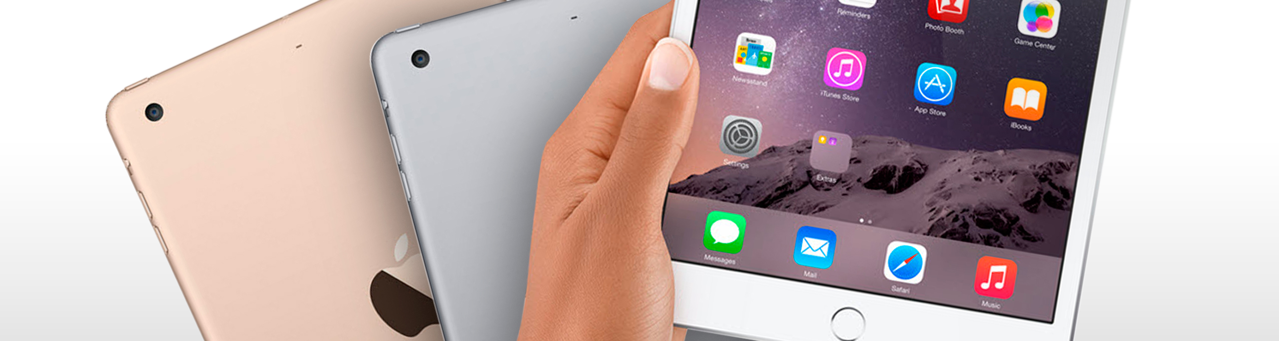 iPad Mini 3 (A1599 / A1600)
