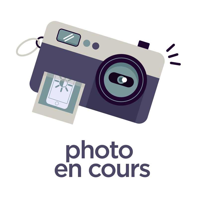 Coque à rabat Silicone iPhone 5 / 5S Transparent Bleu